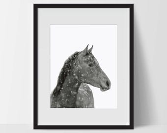 Art Print, Horse Art, Horse Printable, Digital Print, Horse Print, Wall Art, 8x10, Decorations, Horse with Snow, Black White, Art