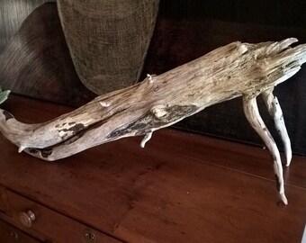 Large Drift Wood for Aquarium Terrarium or Yard Garden Art
