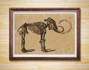 Skeleton decor Mammoth poster Anatomy print