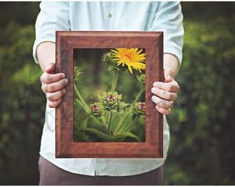 Flower Photography. Yellow Flower Photo. Flower Photo. Flower Art Print. Botanical Print. Botanical Art. Flower Fine Art Photography.