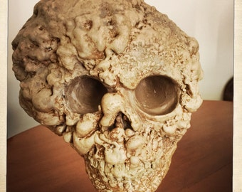 Deformed Skull - weird, oddity, goth, prop, freak show, elephant man, taxidermy, cabinet of curiosities