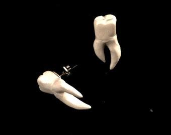 Tooth stud earrings