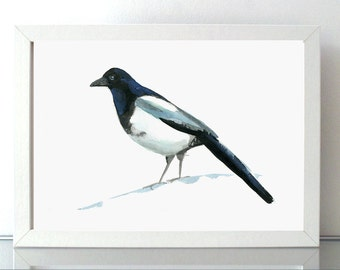 Magpie Art Pig Watercolor Painting - Giclee print - Magpie ink drawing - Animal Painting - Sumi e - Aquarelle bird drawing michelle dujardin