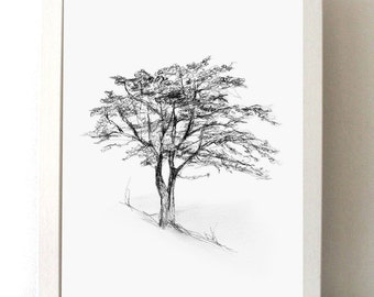 TRee art - Tree drawing - Giclee print -  Home Decor Wall Decor -Tree sketch - Nature illustration -  Art - Zen drawing Michelle Dujardin