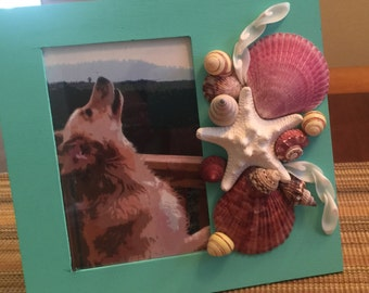 Seashell 4x6 Frame