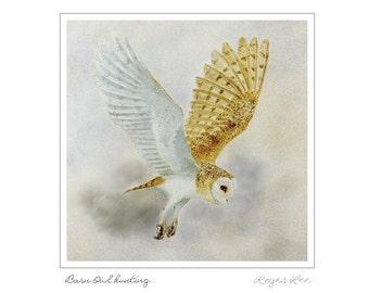 Barn Owl Flying Greetings Card