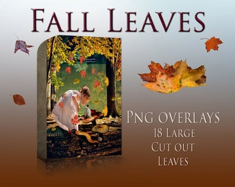 Fall Leaves PNG Pack - Leaf Overlay -  Leaves Cutouts - Photoshop overlay