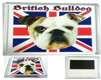 Job Lot/ Joblot/ Bulk of 100 English/ British Bulldog Jumbo Fridge Magnets/ Wholesale