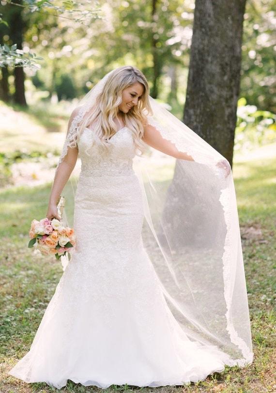 Beaded Lace Wedding Veil