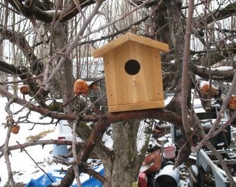 Primitive Cedar Bird House