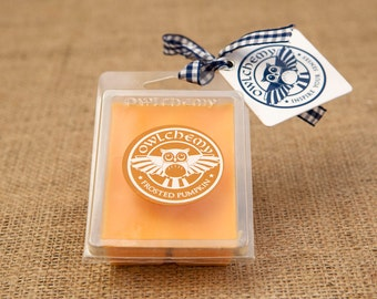 Frosted Pumpkin  wax melts Owlchemy blended beeswax