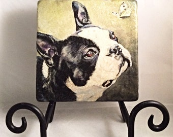 Boston Terrier Coaster Set (includes 4 tiles)