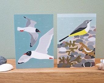 Coastal Bird Greetings Cards - set of 2