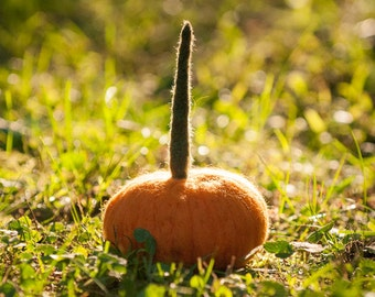 Pumpkin needle felted handmade wool-Medium size