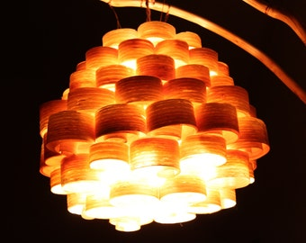 Beehive Light Pendant - shown with optional steam bent branch riser and base