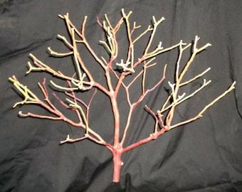 "6 Pk 12"" Tall Natural Manzanita Branch Centerpiece DIY Wedding Anniversary Fresh"