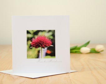 A floral photographic greetings card, blank inside.
