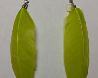 Small lime green feather