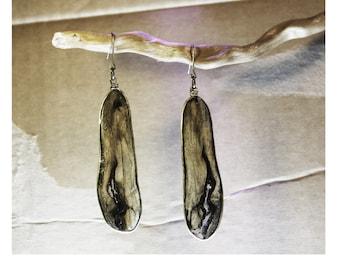 Marine wood and brass earrings