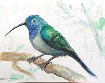 Bird painting, original painting, exotic bird on branch, Bird art, Original watercolor painting, art nursery decor, bird watercolor painting