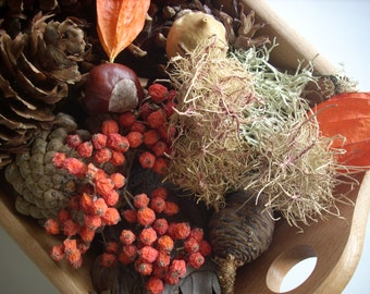 Forest Botanical Potpourri,Eco-friendly and 100% Natural,Beautiful nature mix, Basket filler