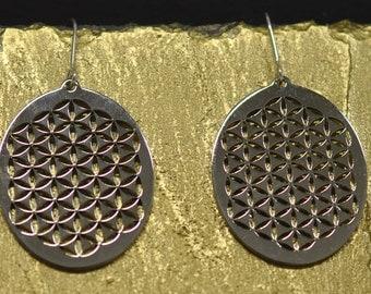 Earrings steel