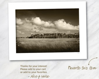 Black & White Fine Art Photo Warm Tone. Crystal River, Florida Salt Marsh. Print is 12x18 matted to 18x24