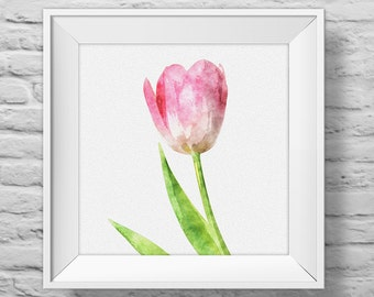 TULIP IN PINK - unframed square art print, inspirational, nature, floral, watercolor, photography, wall decor. (R&R0135)