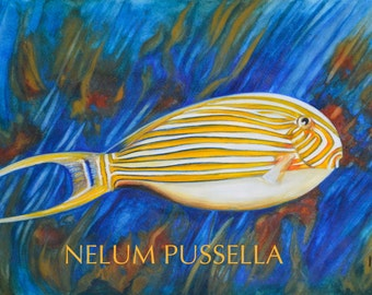 Fish with Stripes-Giclee print of Watercolor painting