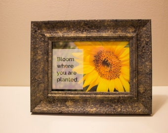 "Sun Flower Framed Photo & Quote - ""Bloom Where You Are Planted"""