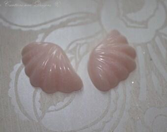 Shells a plenty
