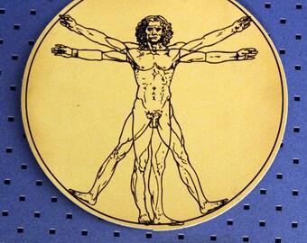 Da Vinci Vitruvian Man Bumper Sticker