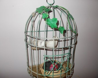 Love Birds in a Cage
