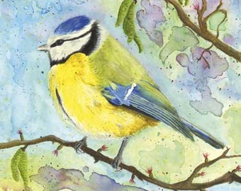 Blue Tit Greetings Card