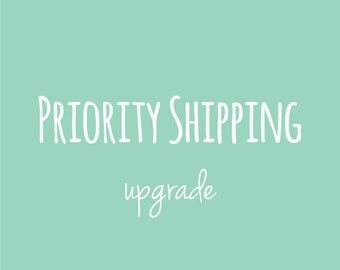 Priority Shipping Upgrade (Domestic)
