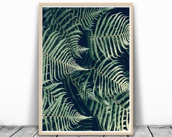 Tropical Print, Green art print, Plant Print, Tropical leaf Print, Green leaves, Photo Download, Tropical Plant Print, Tropical Prints, Fern