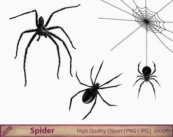 Spider clipart, halloween clip art, scary horror graphics, scrapbooking, digital instant download, commercial use, png jpg 300dpi