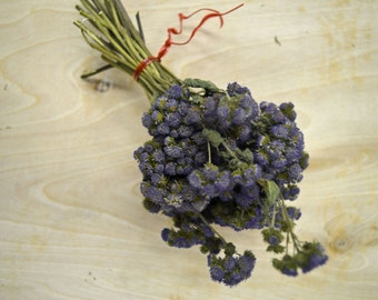 Dried Ageratum Purple Boxful
