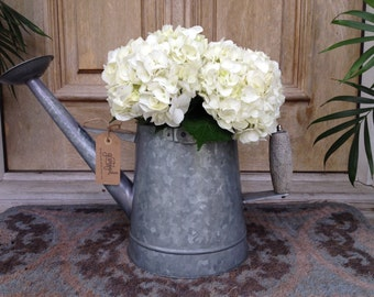 Gorgeous Hydrangeas in a Unique/Useful Watering Pot
