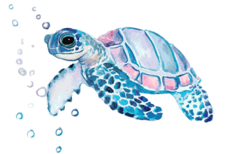 Sea turtle pdf