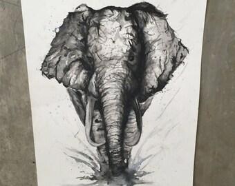 Pintura acuarela de elefante