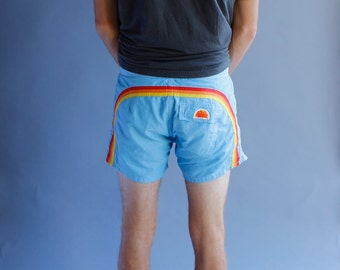 Vintage 60s 70s Rainbow Sundek Swim Trunks - Bathing Suit - Size 31