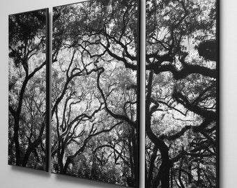 Tri Panel Black and White Photograph Mounted on Wood Float Plaques For A Triptych Wall Art