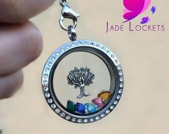 Family Tree Locket, Family Tree Memory Locket, Birthstone Necklace