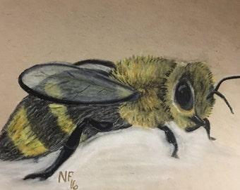 Bee Charcoal Drawing +Unframed + Original +5x7