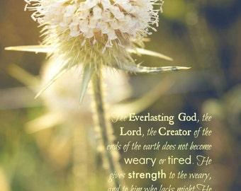 Christian wall art print, Bible verse Isaiah 40, flower Scripture