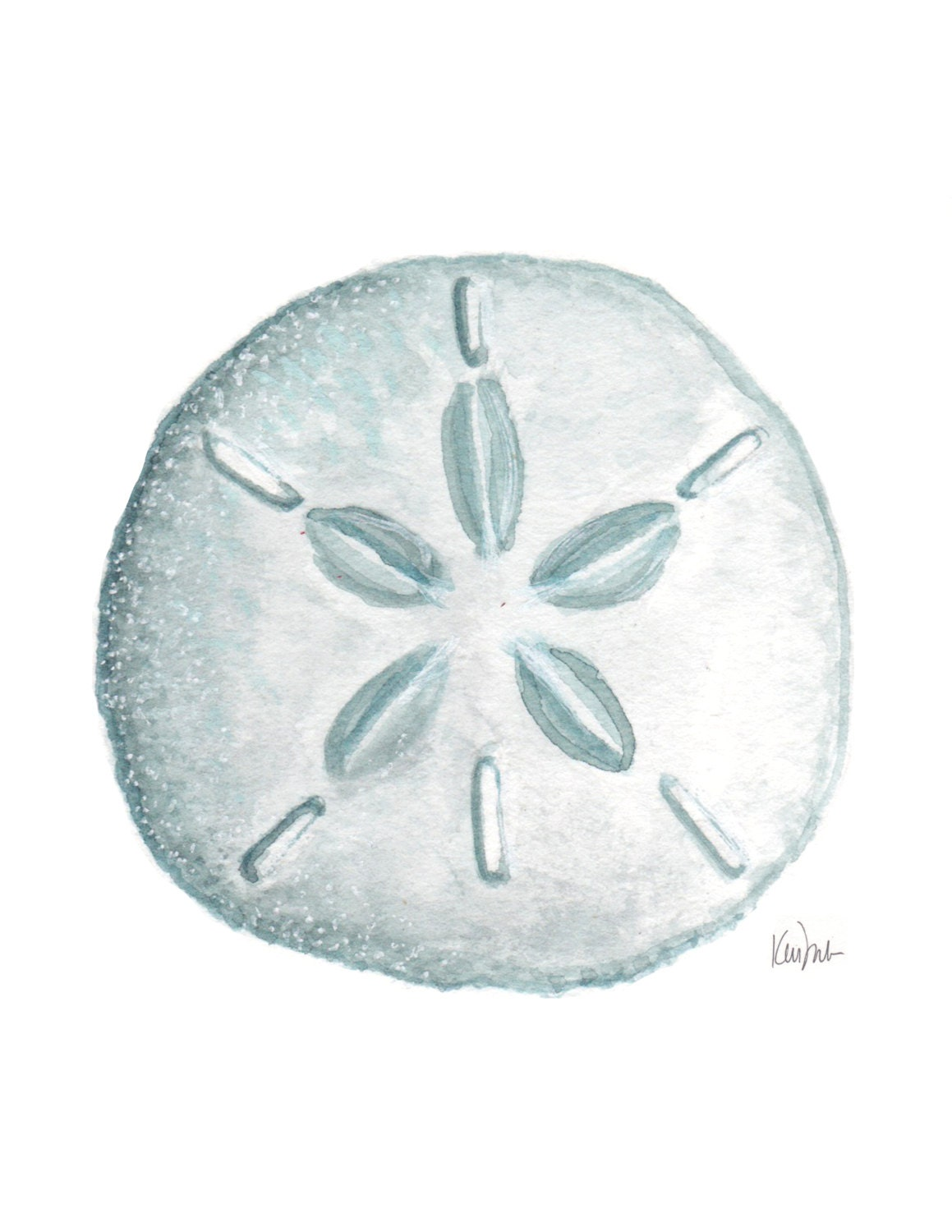 Blue sand dollar illustration - photo#2