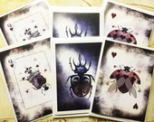 Double Set (6) Blank Greeting Cards featuring Beetles from the Beetle Royale Playing Card Deck