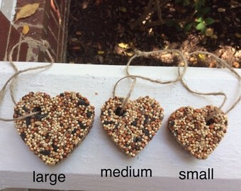 100 Large Birdseed Favors
