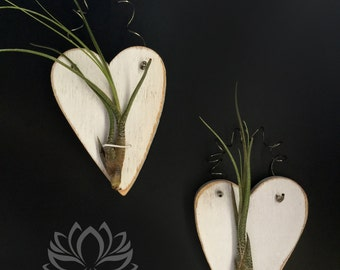 Rustic White Tilly Heart Plaque by Zentilly©